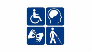 handicaped web